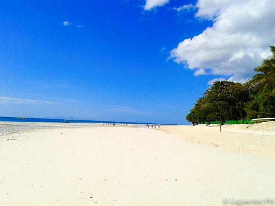 panglao-beach7